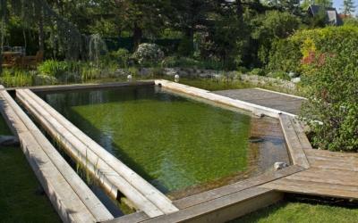 Qu'est-ce qu'une piscine naturelle ?