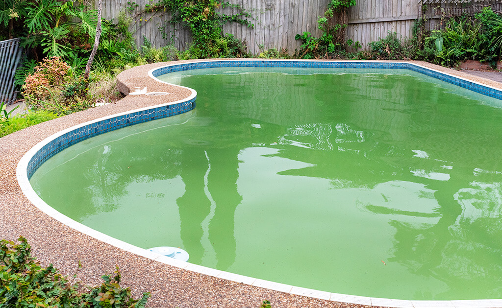 eau de piscine non traité
