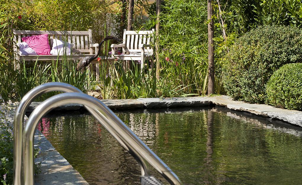 piscine naturelle avec echelle