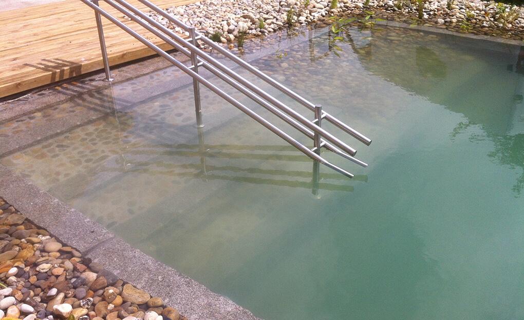 piscine naturelle large